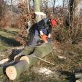 Baumstücke mit der Kettensäge auf Länge schneiden