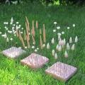 Kleine Wiesenstücke im Gras