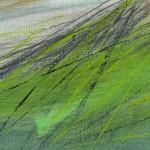 Cornelia Genschow - Bild 'Grassland'